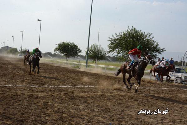 عکس هایی از قهرمانان هفته های یکم تا چهارم مسابقات تابستانه تهران 1395
