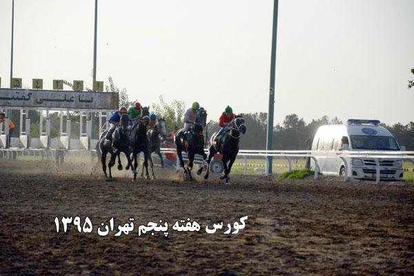 عکس هایی از قهرمانان هفته های پنجم و ششم مسابقات تابستانه تهران 1395